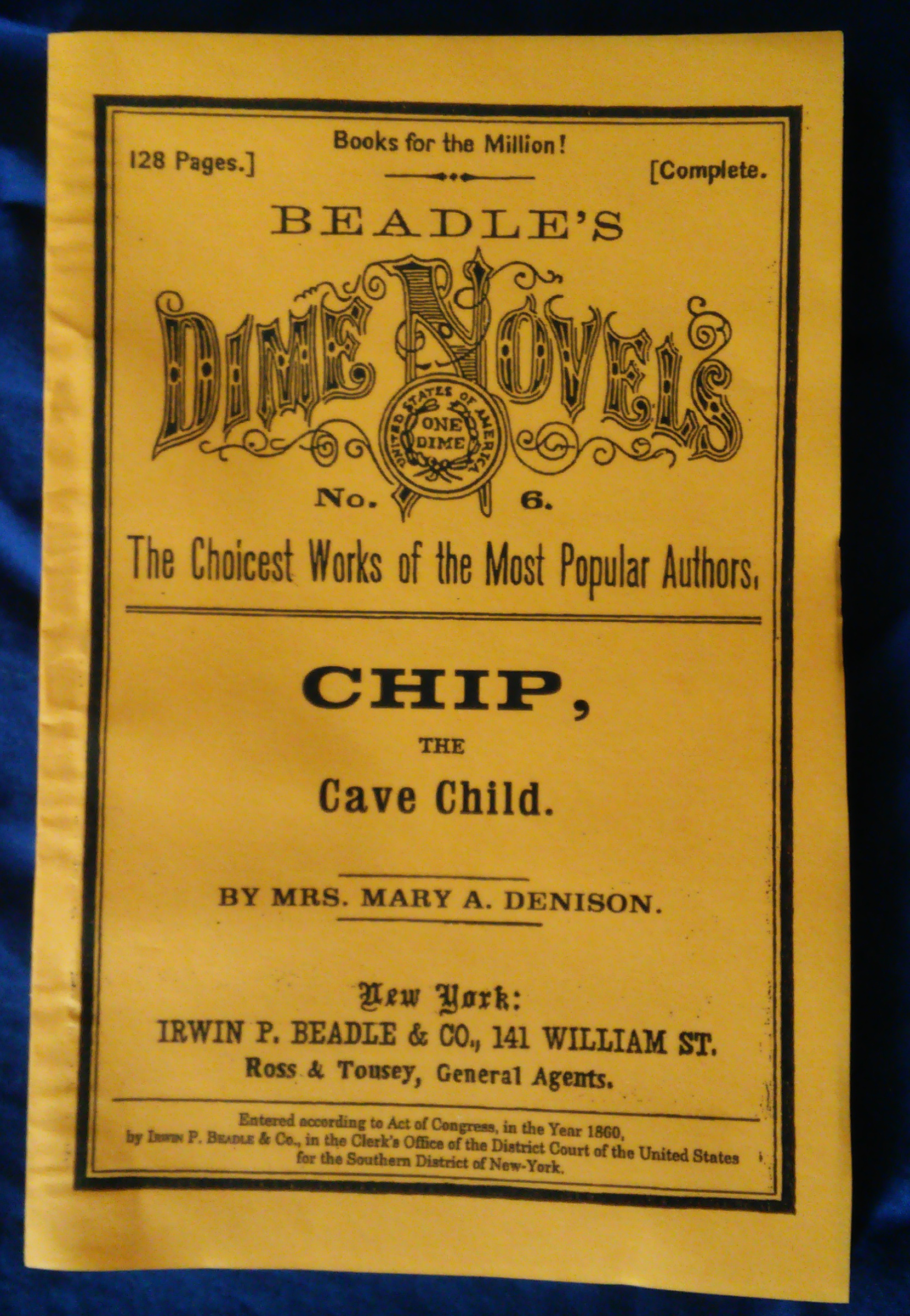 Novel - Chip the Cave Child